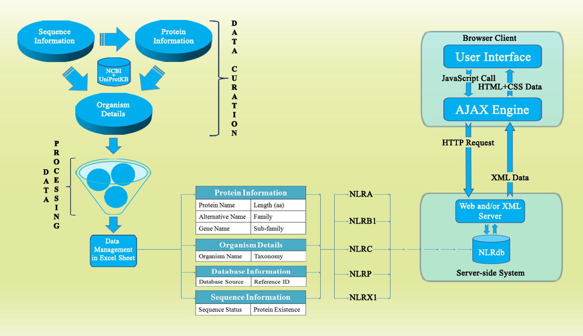 Lrr Search Tool And Database Process Flow Diagram Engine Schematic Click Here To See Chart Of Methodology In Nlrdb